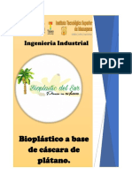 bioplastic proyecto 2 revision actual.docx