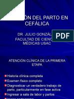 Atencion Del Parto en Cefalica