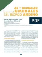 Lagunas y Oconales - Humedales