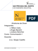 Sindrome de Down Documento Proyecto