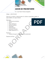 Guía - Formato Presentación Preinforme - Informe