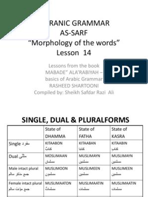 Sarf Lesson 14 Plural Grammatical Number