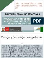 TALLER TEORICO HERRAMIENTAS PARA FORTALECIMIENTO ORGANIZACIONAL DEL COMITÉ.pptx