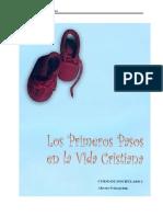 LOS PRIMEROS PASOS.pdf