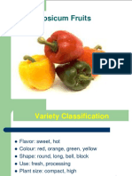 Pepper, tomato, Cucumber Presentation.pdf