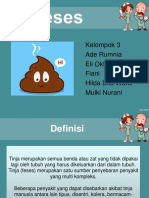 PPT FESES
