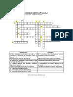 CRUCIGRAMA DE LA CELULA organelos.docx