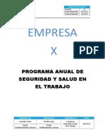 Modelo Programa Anual de Seguridad y St 2017
