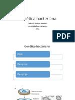 Genetica Bacteriana Yale