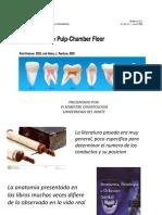 Anatomia Del Piso de La Camara Pulpar