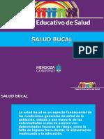 bucal-presentacion (2)