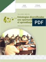 Estrategias diversificadas - una oportunidad para el aprendizaje.pdf