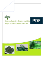 Algae Non-fuel Products Report Feb 2015 - Client Version