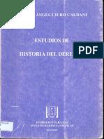 Ciuro Caldani, Miguel Ángel - Estudios de Historia del Derecho.pdf