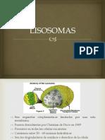 Clase Lisosomas