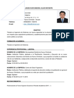 CV-Elias Villanueva Bonacegra