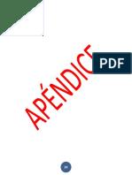 APENDICE (1)