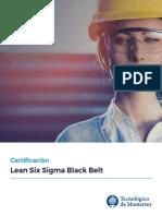 EC PV Lean Six Sigma Black Belt 2018 1 Ad