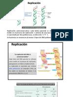 Genética Bacteriana (Clase 4 Parte 2)