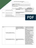 Planificacion Ensayo Academico Individual 2017