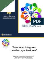 SINERGIA-1.pptx