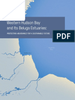 Western Hudson Bay Report, Oceans North