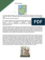 Forma de Cultivo y Alimentación de Los Mayas