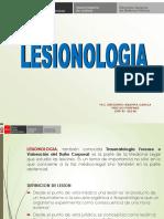 Presentacionlesionologia 151012214456 Lva1 App6892