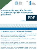 Tema 1.2 El Papel Del Agua en Los Sistemas Forestales(1)
