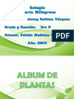 album de plantas en presentacion.pdf