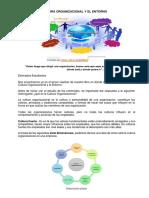Cultura Organizacional y El Entorno