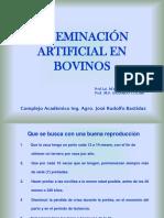 Inseminación artificial en Bovinos