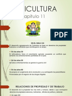 Desarroloo Economico Colombia Cap 11