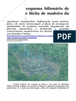 ARTIGO- PF Ataca Esquema Bilionário de Exploração Ilícita de Madeira Da Amazônia