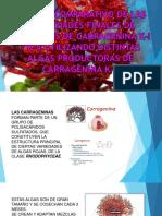 Carrageninas-parte 1 Expo