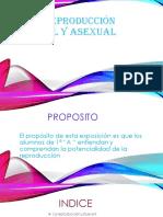 La Reproducción Sexual y Asexual