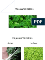 Articles-23125 Recurso Ppt