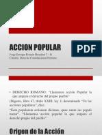 Accion Popular Exposicion