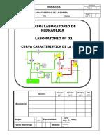 02 - Curva Caracteristica de la Bomba - 2018.1.pdf