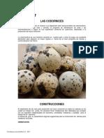 Manual Codornices Solla 2017