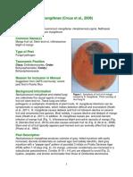 Neofusicoccum Mangiferae Datasheet[1]
