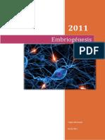 Neuronatomia