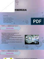 Biomineria Total