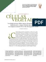 Células Madre Vegetales (1)