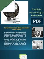 Analisis Microb Del Suelo