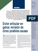 DOLORARTICULARENELGATO.pdf