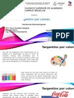 targentins por colores.pptx