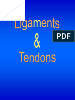 tendon lig.pdf