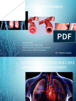 Broncodilatadores Seminario Dr. Umañana