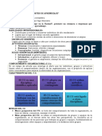 Comportamiento Organizacional- Temas Basicos